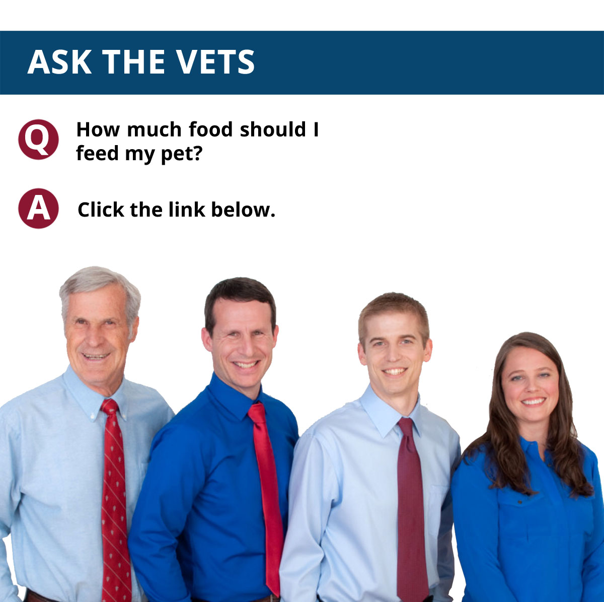 Ask The Vets: Volume 2