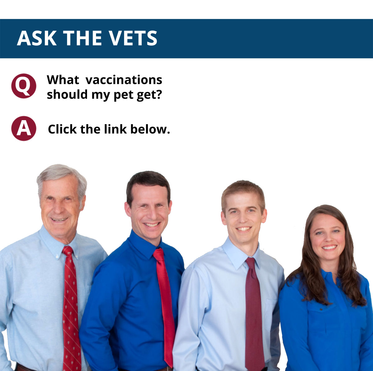 Ask The Vets: Volume 3