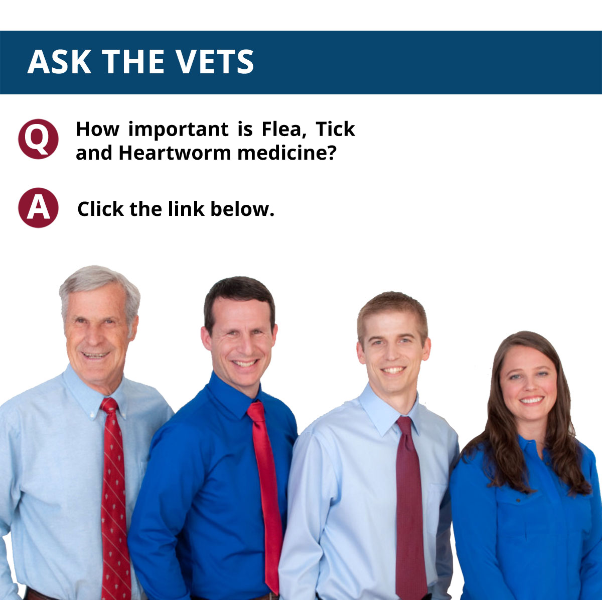 Ask The Vets: Volume 4